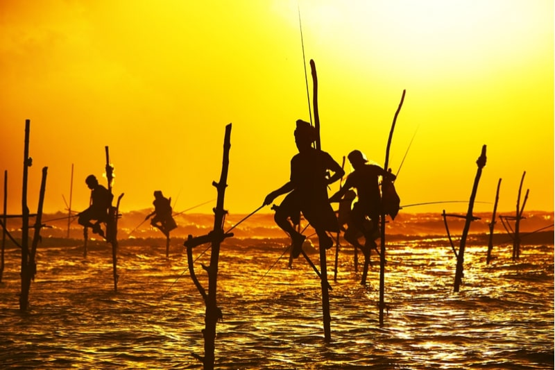 iconic stilt fishing in Galle